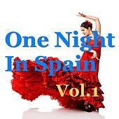 One Night In Spain, Vol.1 de Various Artists