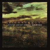 Ticonderoga by Jamie Saft