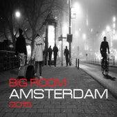 Big Room Amsterdam 2015 de Various Artists