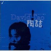 David Tao by David Tao