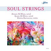 Soul Strings von Various Artists
