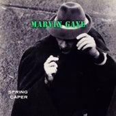 Spring Caper de Marvin Gaye