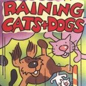 Raining Cats and Dogs by Kidzone