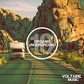 Organic Underground Issue 10 by Various Artists