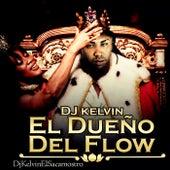 El Dueño del Flow de Various Artists