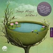 Deep Magic Waters, Vol. 4 by Various Artists