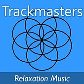 Trackmasters: Relaxation Music di Various Artists
