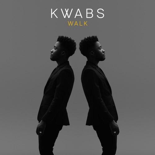 Walk (Todd Edwards Remix) von Kwabs