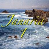 Janaria, Vol.1 von Various Artists