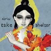 Take Shelter von Abrial