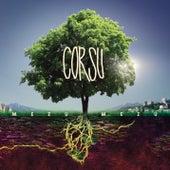 Corsu - Mezu Mezu de Various Artists
