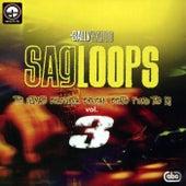 Sagloops Volume 3 - The Ultimate Bhangra Break Beats For The DJ by Bally Sagoo