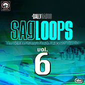 Sagloops Volume 6 - The Ultimate Bhangra Break Beats For The DJ de Bally Sagoo