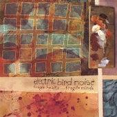 Fragile Hearts.....Fragile Minds by Electric Bird Noise