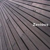 Zevious by Zevious