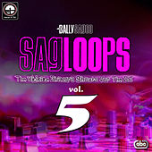 Sagloops Volume 5 - The Ultimate Bhangra Shouts For The DJ de Bally Sagoo