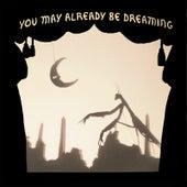 You May Already Be Dreaming by Neva Dinova