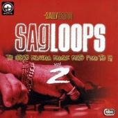 Sagloops Volume 2 - The Ultimate Bhangra Break Beats For The DJ by Bally Sagoo