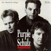 Der Stand Der Dinge von Purple Schulz