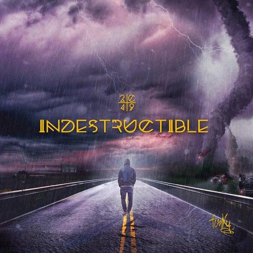 Indestructible de Funky