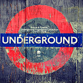 Bonzai & Friends - Underground Progressive Collection 2010 - 2014 de Various Artists