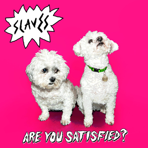 Are You Satisfied? by Slaves