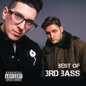 Best Of 3rd Bass de 3rd Bass