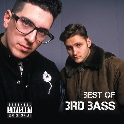 Best Of 3rd Bass by 3rd Bass