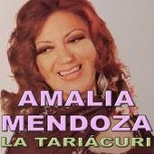 La Tariácuri by Amalia Mendoza