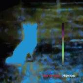 Nightvision by Mark Van Hoen