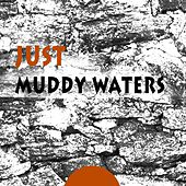 Just de Muddy Waters