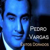 Pedro Vargas - Éxitos Dorados de Various Artists