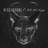 Caracal by Disclosure