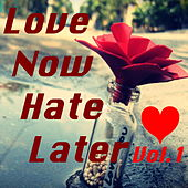 Love Now Hate Later, Vol.1 by Various Artists