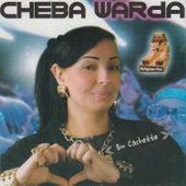 En Cachette by Cheba Warda