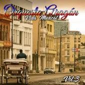 Vida Musical, Vol. 3 by Orquesta Aragon