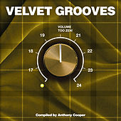 Velvet Grooves Volume Too Zen! by Various Artists