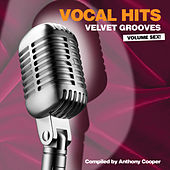 Vocal Hits Velvet Grooves Volume Sex! by Various Artists