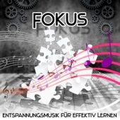 Fokus – Entspannungsmusik mit Natur für Effektiv Lernen, Konzentration, Regeneration, Stressbewältigung, Lernen, Denken & Lesen by Various Artists