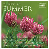 The Miracle of Summer by Various Artists