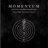 Whetting Occam's Razor by Momentum