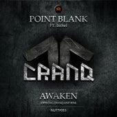 Awaken (Cranq Anthem 2015) (feat. Ixchel) by Point Blank (Rock)