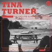 The Endless Summer Collection de Tina Turner