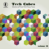 Tech Cubes, Vol. 11 - Selection of Finest Tech-House Tunes! by Various Artists