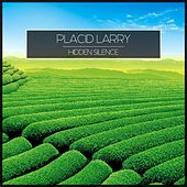 Hidden Silence by Placid Larry
