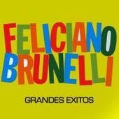 Grandes Éxitos by Feliciano Brunelli