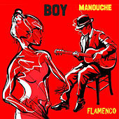 Manouche Flamenco by BOY