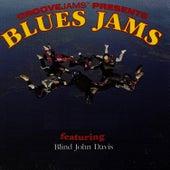 Blues Jams featuring Blind john Davis by Blind John Davis