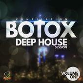 Botox Deep House Session, Vol. 1 de Various Artists