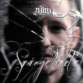Spiegelbild by Various Artists